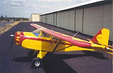 Kitfox with VGs on the wings