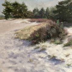 Toward The Creek