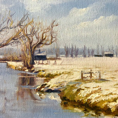 Winter In The 'Polder'