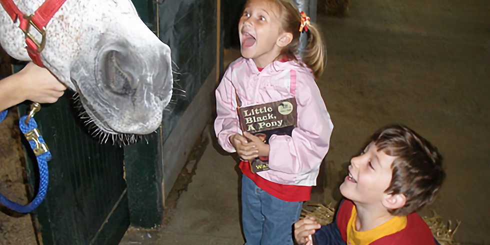 Read Aloud to the Horses
