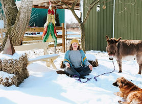 lh, dog and donkey tied to patience tree