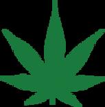 SUPERx Medical Green