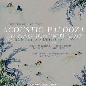 Acoustic Palooza 2017
