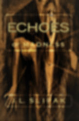 Book Two of The Echoes' Series