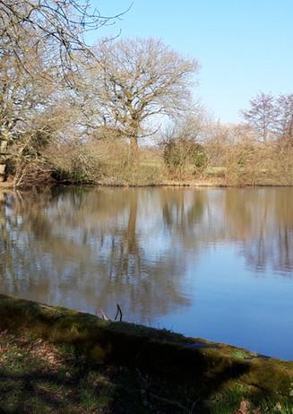 mill ponds