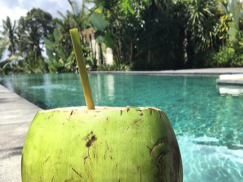 Anne-Po-Yoga-Retreats-coconut.png