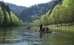 Traditional wooden rafts on Dunajec