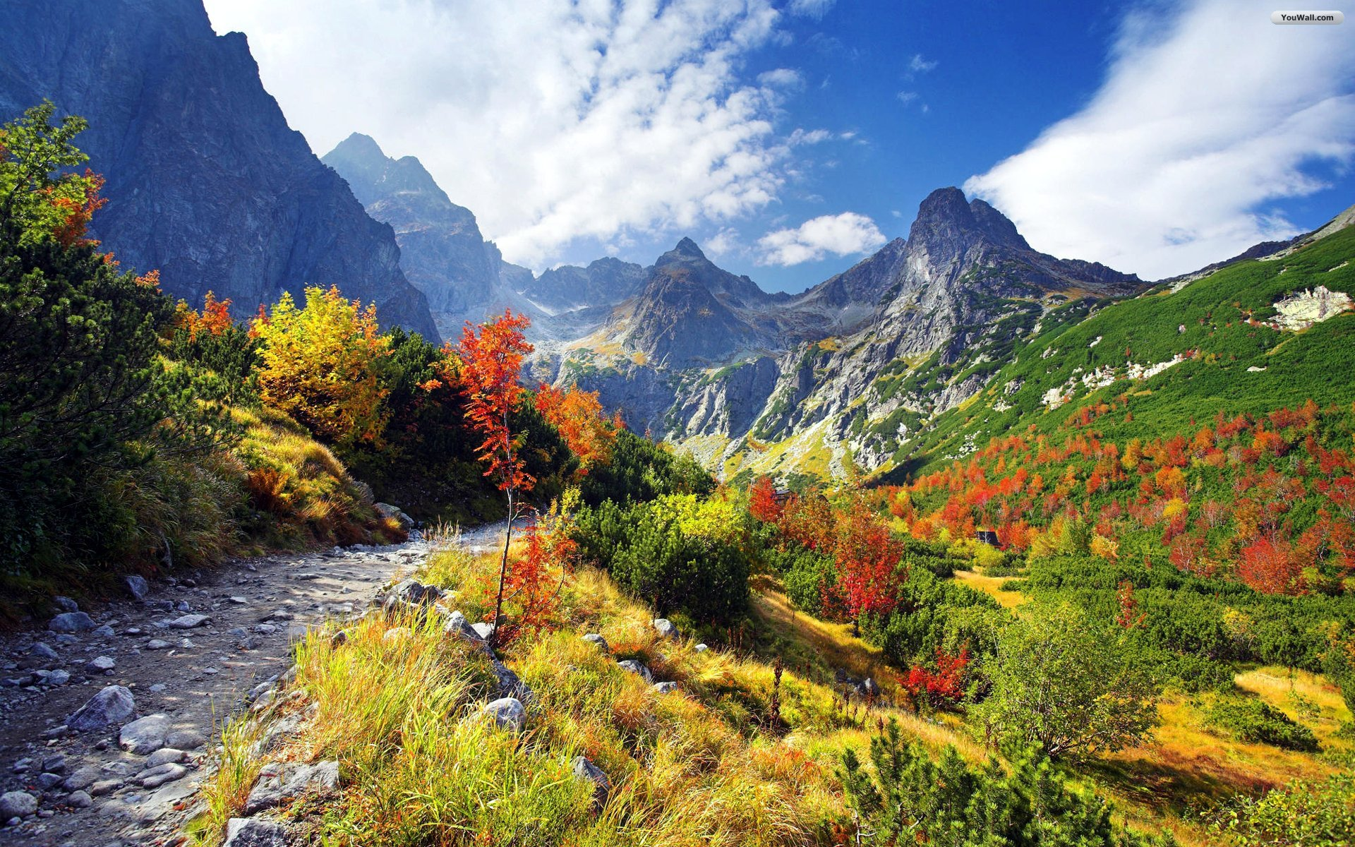 Autumn colours in High Tatras