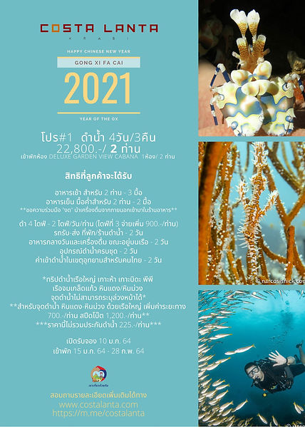 Diving Trip Promotion Krabi Diving Package