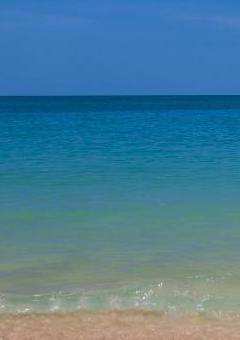 beach 240x350_1.png