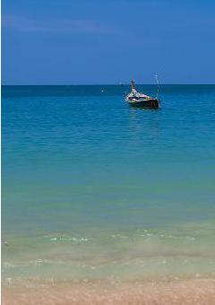 beach 240x350_2.png