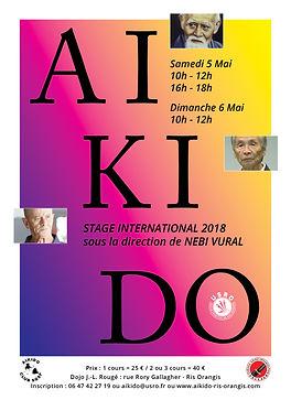 aikido ris orangis stage 5 6 mai 2018 nebi vural