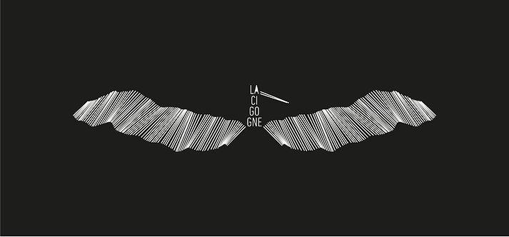 logo1-identite-le-tempo-de-la-cigogne-vaxt