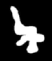 BAUDTOUN-siteforme_edited.png