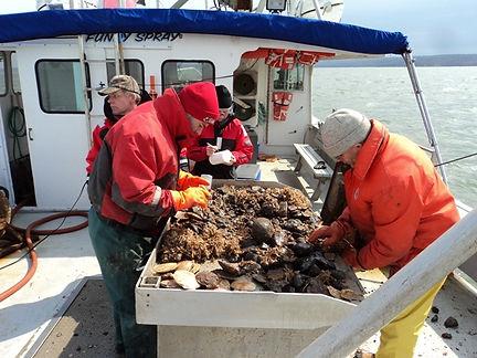 Huntsman Marine Science Centre Research