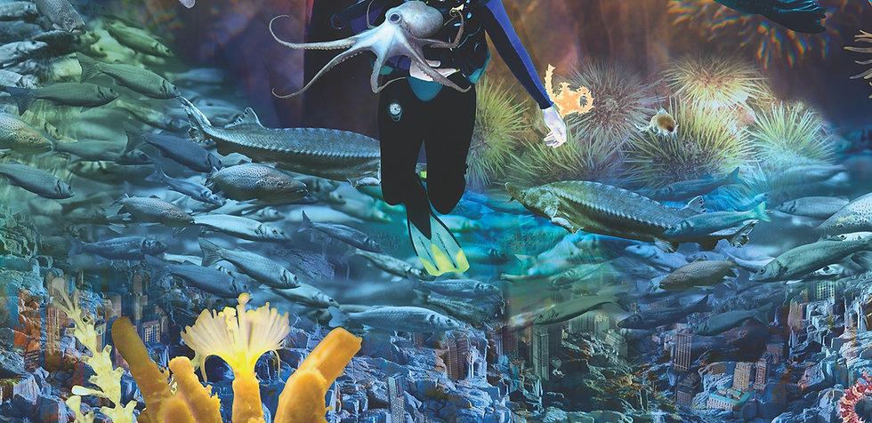 AquariumDiver_edited.jpg