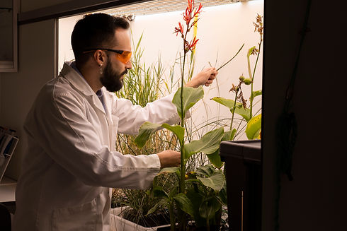 Bioo team lab with plants.jpg