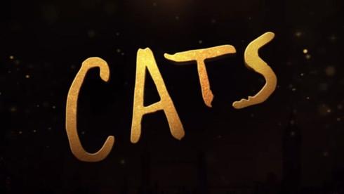 Cats - CFX Artist