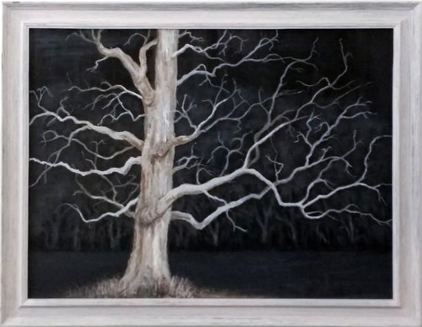 Tree Highway 160