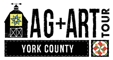 York_County_Header.png