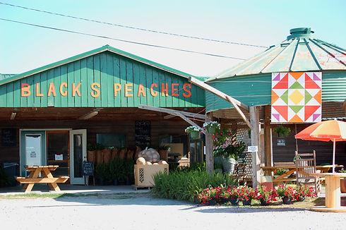 Black's Peaches 2.jpg