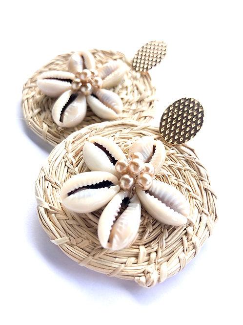 Iraca Cowry Shells