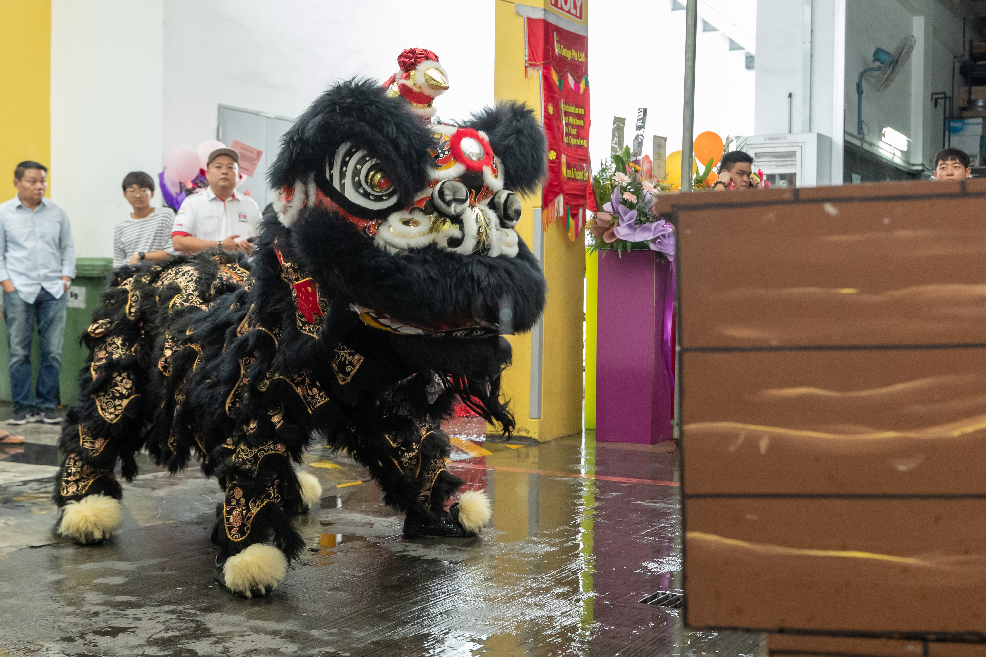 TONG YI LION DANCE TROUPE