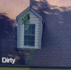 Roof Washing .jpg