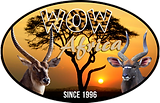 WOW Africa Logo 8 MB.png