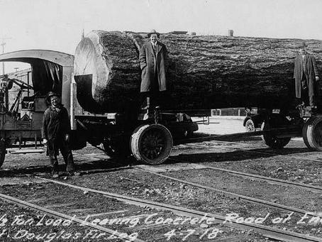 Douglas Fir Log Motorhome : 1920