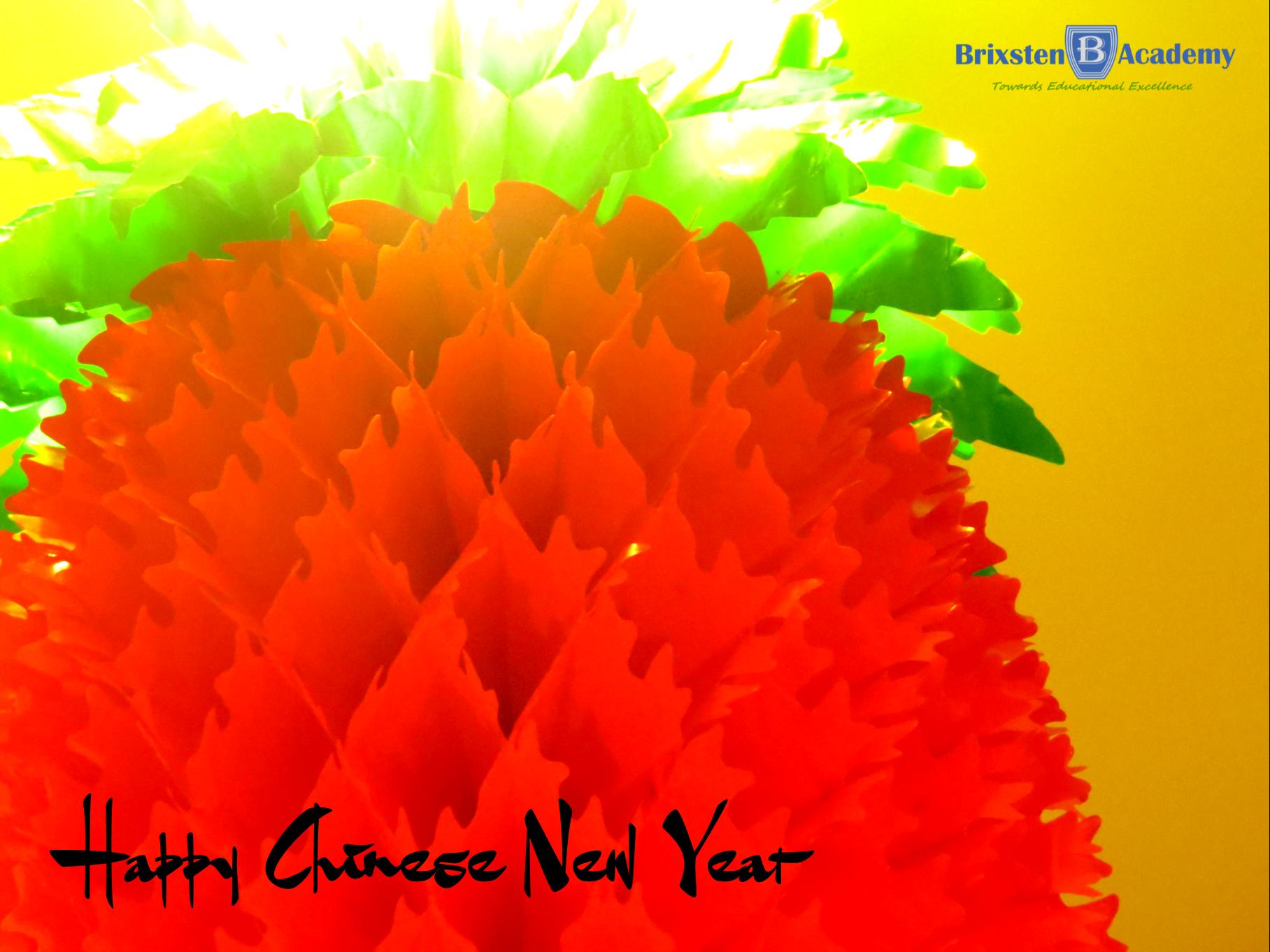 Chinese New Year Celebration 1
