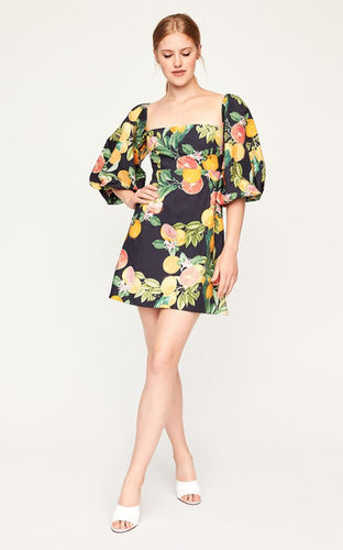 + Botanical lemons/oranges print +