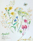 +Meadow Flowers +