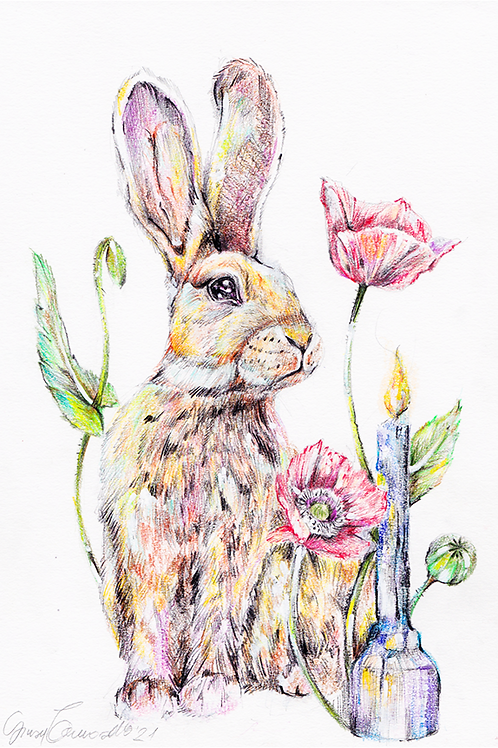 The Hare - Original drawing