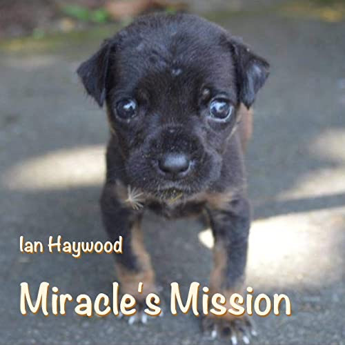 Miracle's Mission - Ian Haywood
