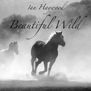 Beautiful Wild - Ian Haywood