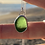 Thumbnail: Mermaid Tear Sea Glass Necklace