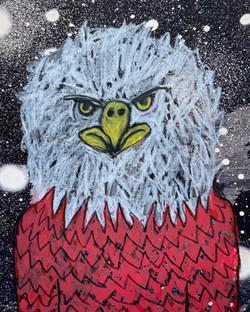 Bald Eagle Spirit