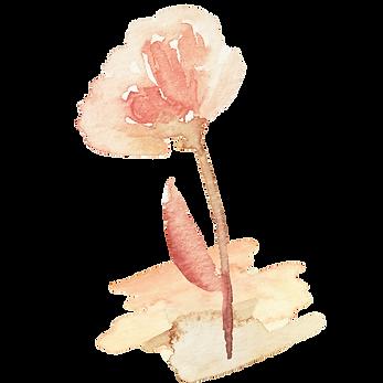 IanMikraz-Watercolor-Abstract-Flower-Ill