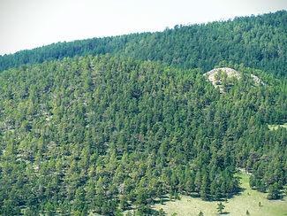 В Бугульдейке приморский хребет сходится с тажеранскими степями.