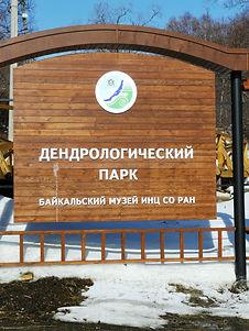 Дендрологический парк в посёлке Листвянка.