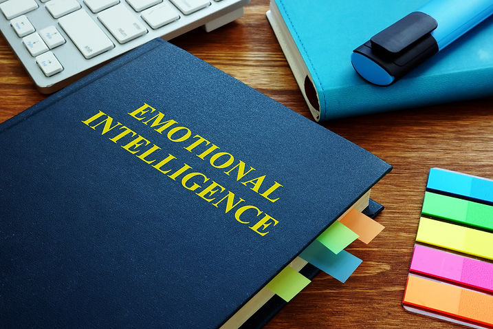 Emotional Intelligence guide and notepad