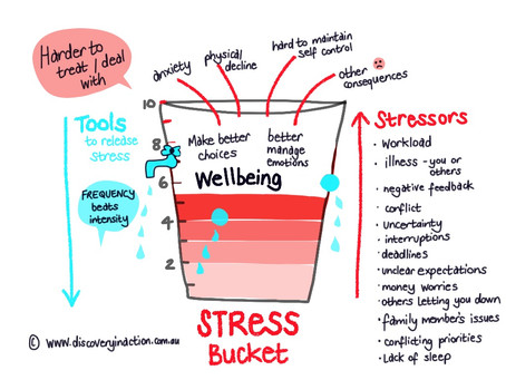 Your Stress Bucket