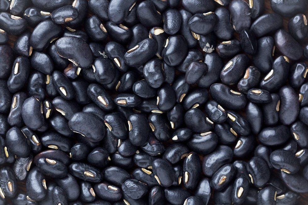 black bean on background.top view.jpg