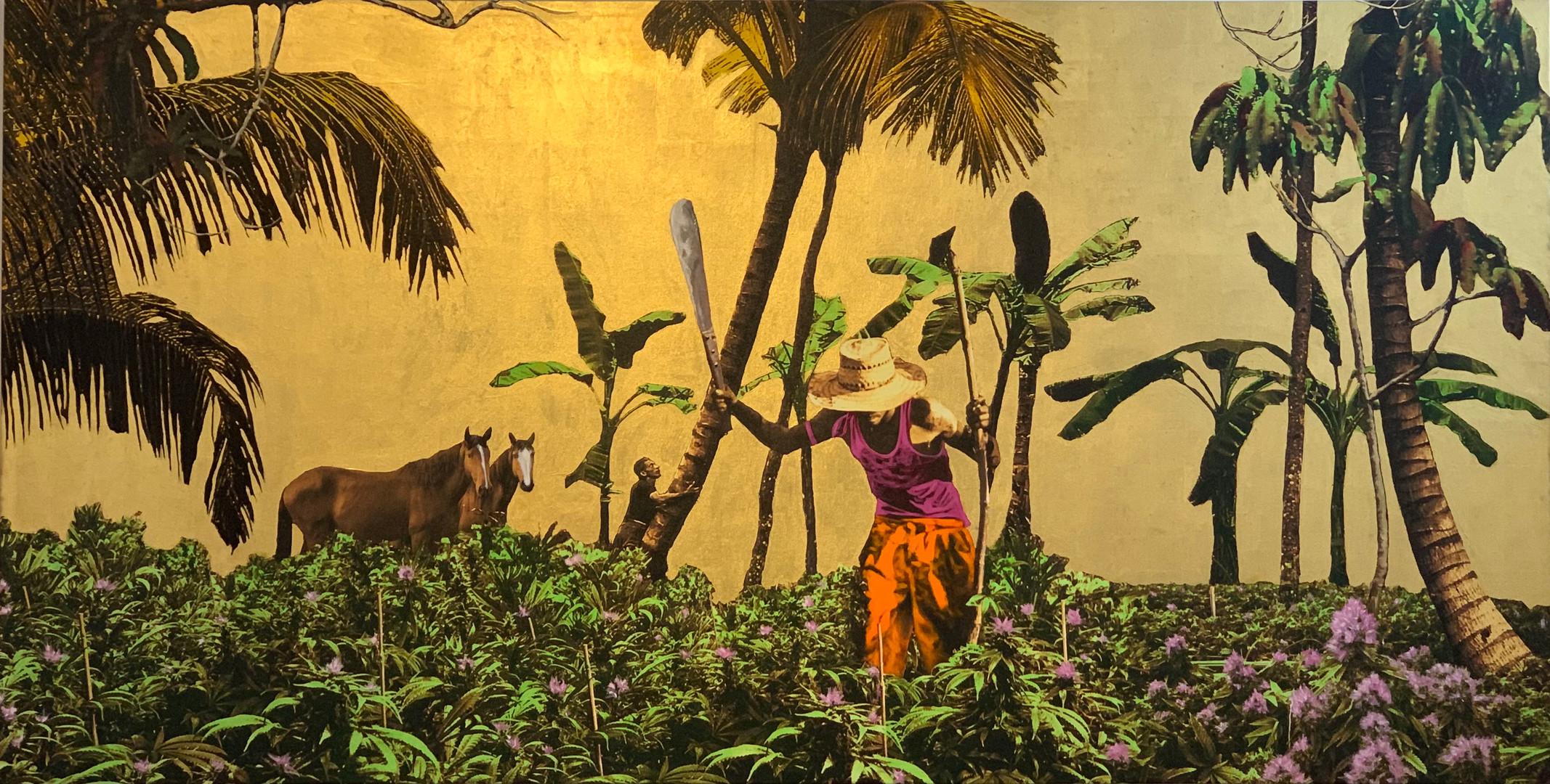 Golden Plantation with horses.jpg