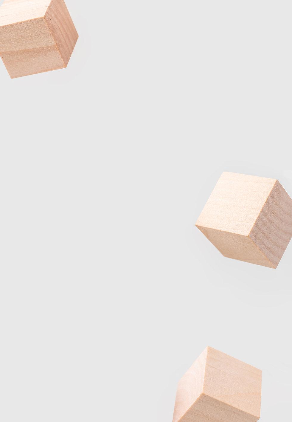 WellLife_Blocks_V3.jpg