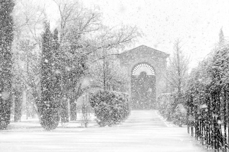 Palacio en invierno [02] (2018)