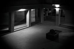 #día 14 la noche