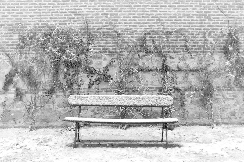 Palacio en invierno [06] (2018)