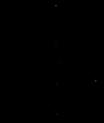 meia-raposa-2.png